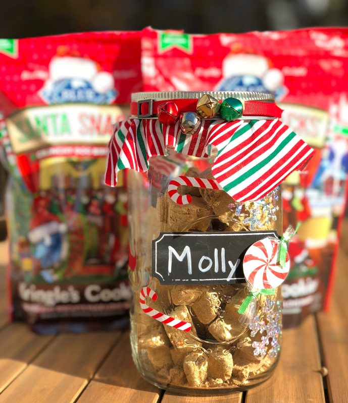 Treat jar filled with Blue Buffalo Santa Snacks