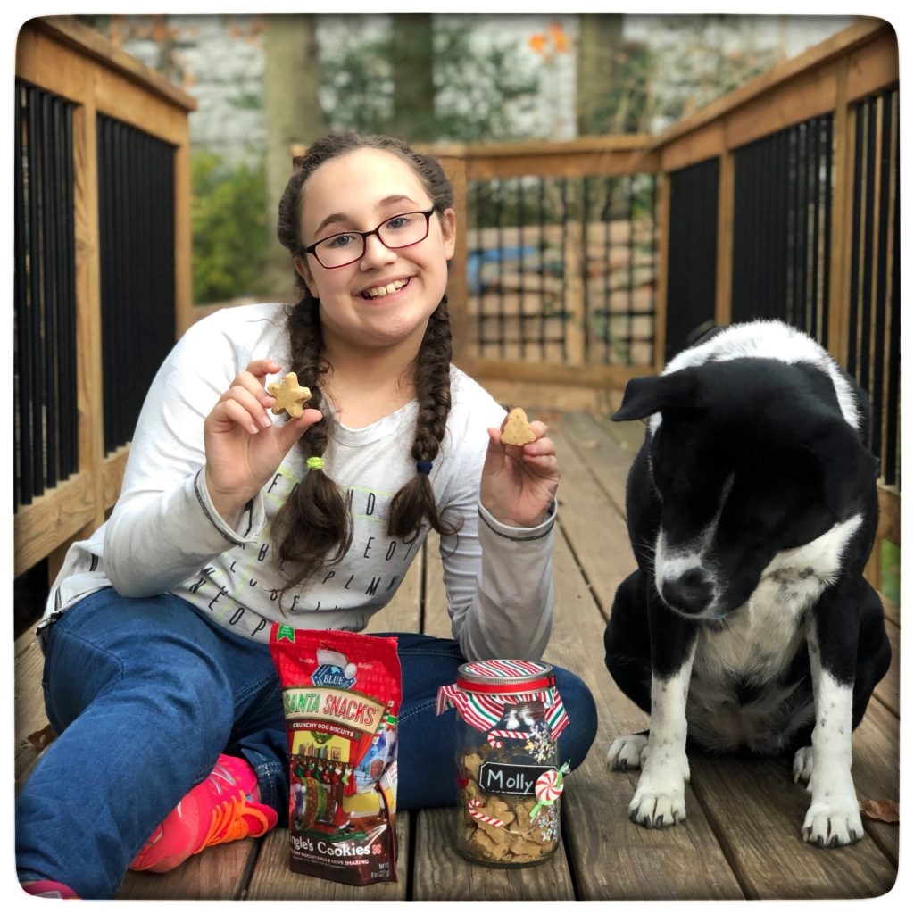Gifts for dog lovers and make your own treat jar