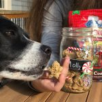 gift ideas for the dog lovers