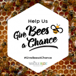 Whole Kids Foundation Give bees a chance campaign