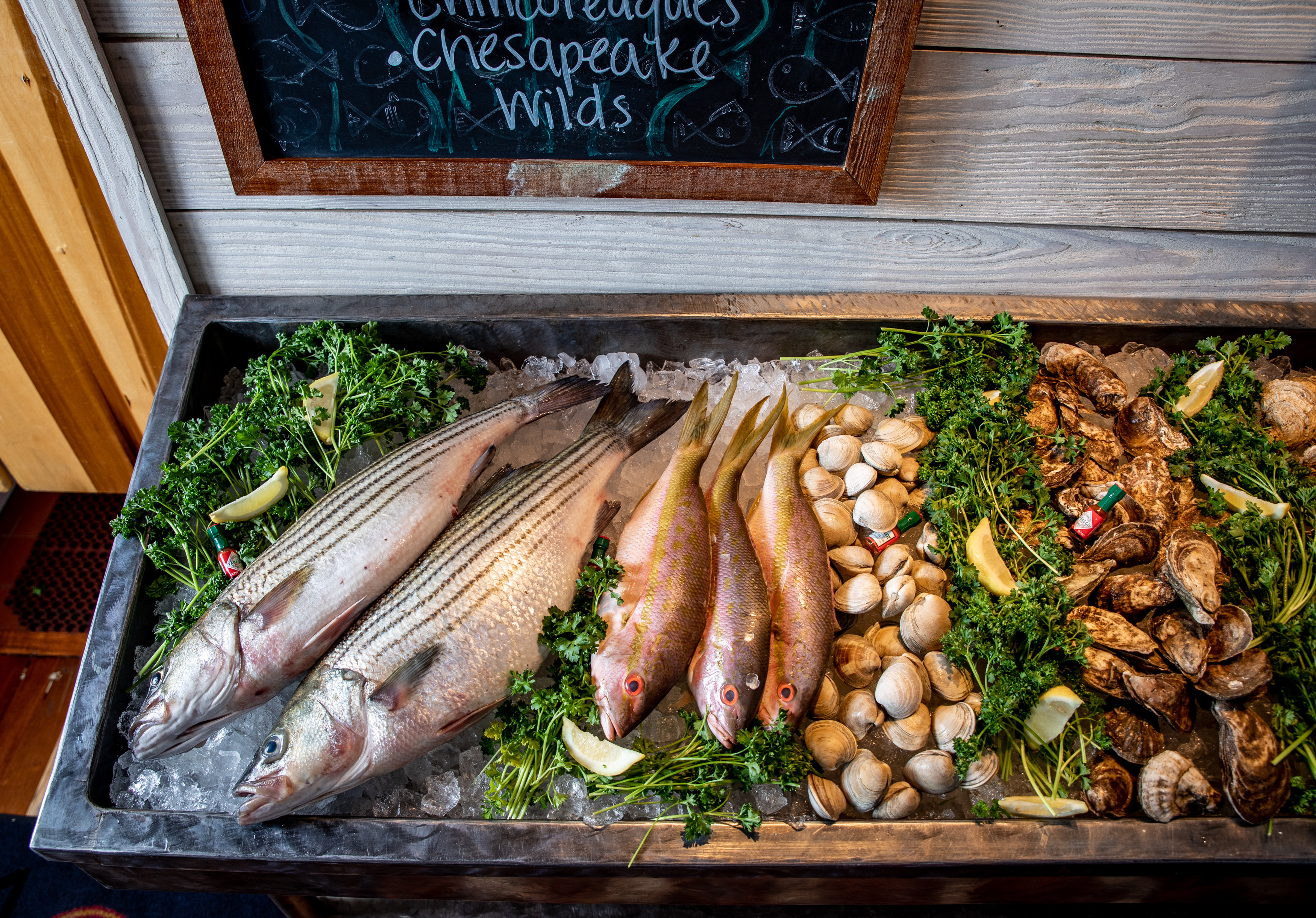 fresh fish at Blue Point Provisions in the Hyatt Chesapeake