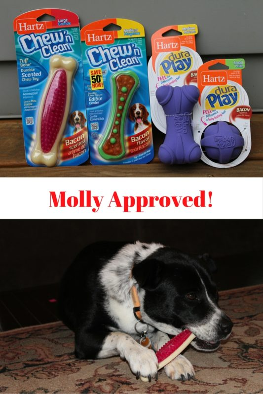Molly Approved dog toys!