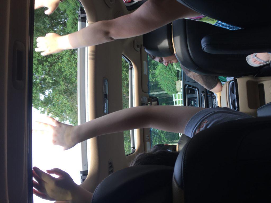 Kia sunroof arms up