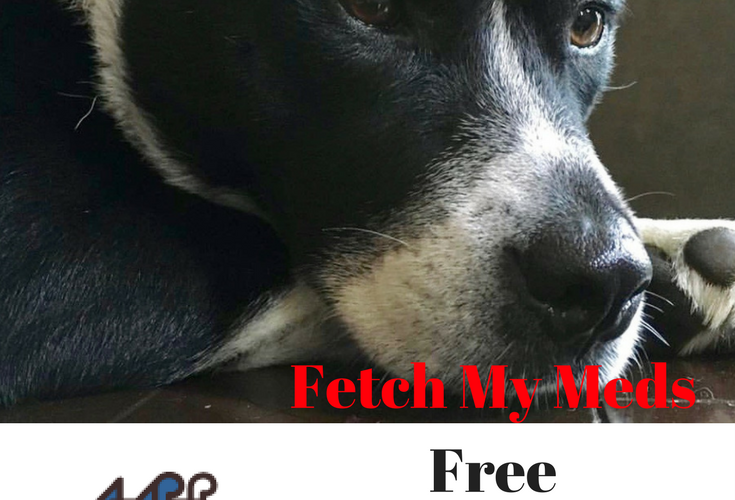 Fetch My meds: a free discount program for pet medications via Cookwith5kids @cookwith5kids mom blog