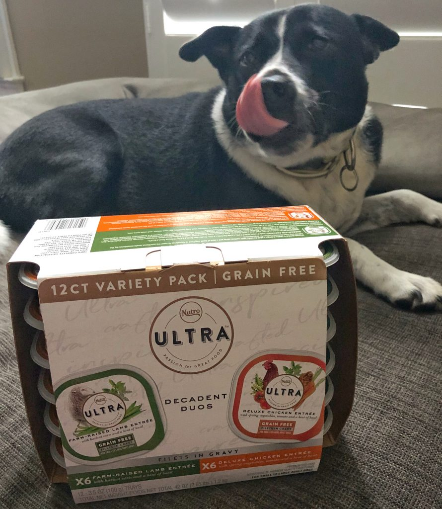 Nutro Ultra decadent duos grain free duos with gravy dog food with Chewy.com easy ordering